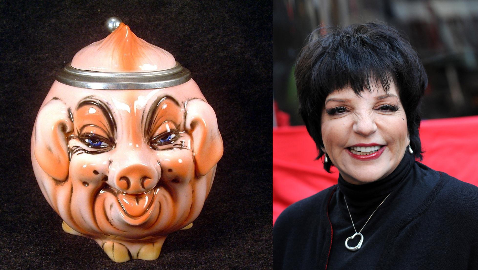 Liza Minnelli Pig Stein