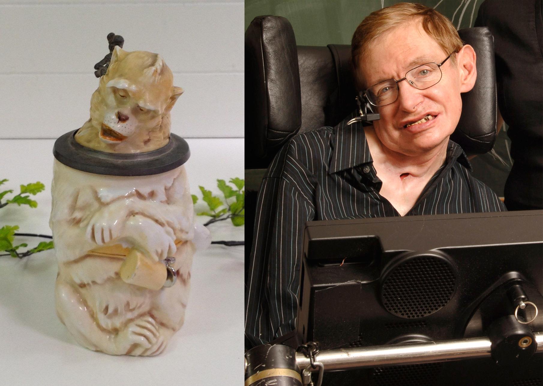 Stephen Hawking Monkey Stein